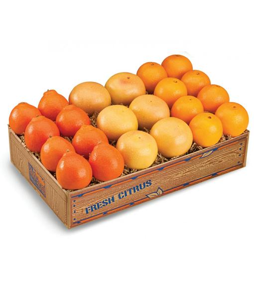 Honeybells, Navels and Grapefruits