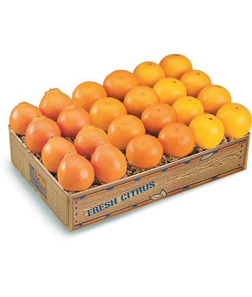 Honeybells, Navels and Tangerines