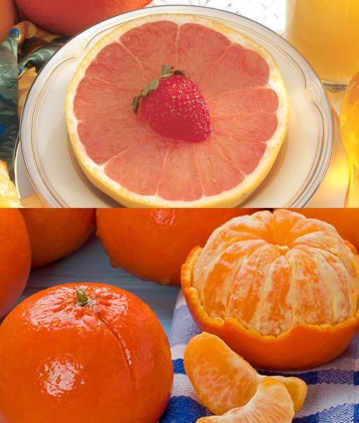 Murcott & Grapefruit
