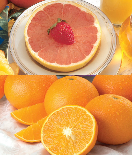 Orlandos & Grapefruits