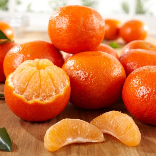 Orri Oranges