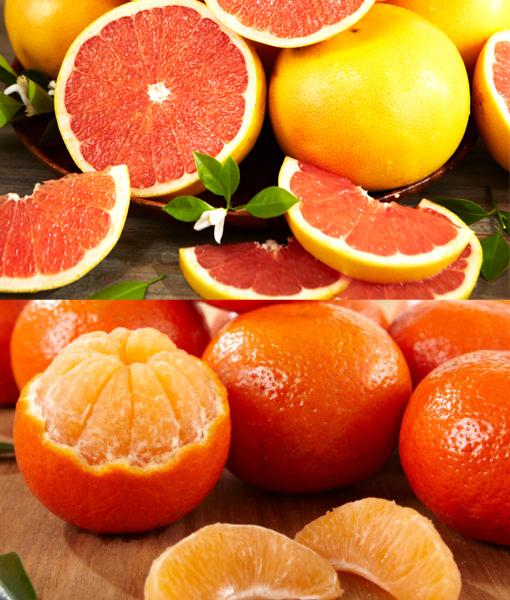 Orri Oranges & Red Grapefruit