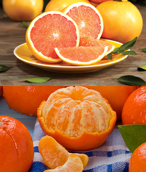 Red Grapefruits & Tangerines